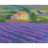 A Farm of Lavender