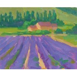 And We Ran Through Fields of Lavender