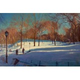 Long Shadows in Central Park